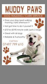 'Anstey Dog Walker '