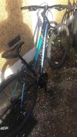 Specialized Ariel Disc Bike in blue(negotiable price)