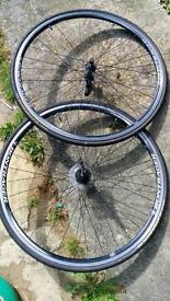 Trek 700c road bike wheels
