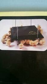 BROODER/HEAT PLATE FOR UPTO 40 CHICKS