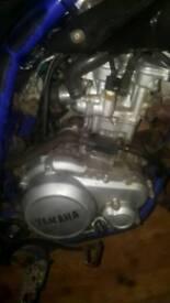 2010 Yamaha wr 125 engine