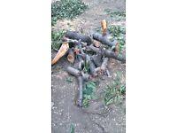 Free Cherry log / wood / firewood in Turnpike Lane / N8