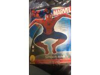 X-large Spider-Man fancy dress