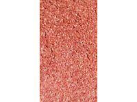 New carpet off-cuts - Colour Russet/Terracotta
