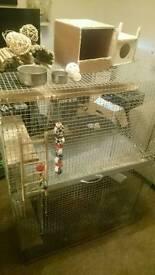 X2 Chinchilla/Degu Cages