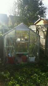 Greenhouse only £50