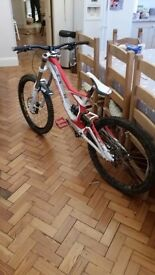 specialised demo 8 dh bike