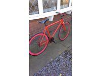 Fixed wheel fixie bike