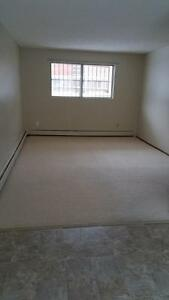 1 Bedroom Apartment Awesome Deal! Edmonton Edmonton Area image 2