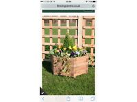 Wooden planter hexagonal