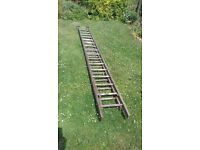 Wooden ladders 3.8m x 2 sections