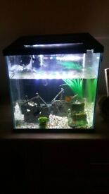 Fish tank /aquarium 6 months old with accessories