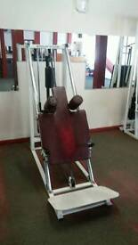 Pulse Star Hack Squat machine