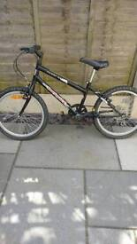 Muddy Fox bike bicycle