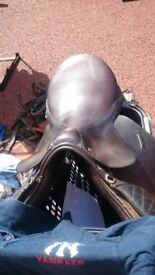 Soverin coleman saddle