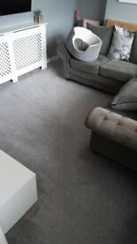 Carpet Cleaning !