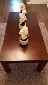 Mahogany Solid wood Coffee table