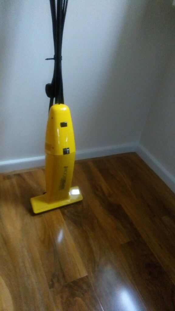 Electrolux lightweight vacuum cleaner z161. Works perfectly but have now got hard flooring.