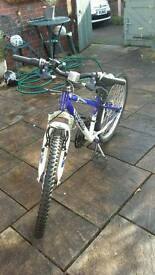 Apollo Gradient Boys Bike