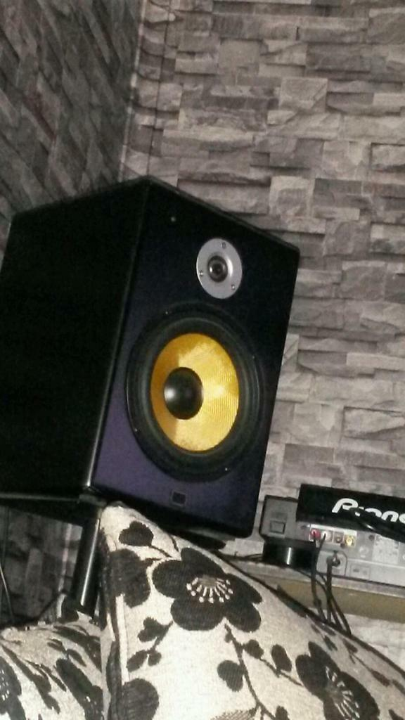 citronic st8 studio monitor dj speakers