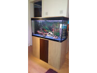 FLUVAL ROMA 200 LITER FISH TANK AND STAND,,FULL SET UP