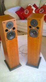 Award Winning Acoustic Energy Floor Speakers