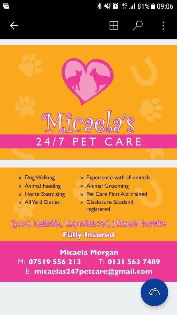 Professional pet care service