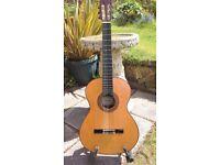 Almansa 449 Flamenco Negra Guitar