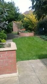 Double room in pleasant shared house