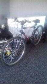 Mens ascent terrain bike