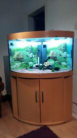 190 LITER JUWEL TRIGON CORNER FISH TANK FOR SALE,,FULL SET UP