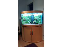 190 LITER JUWEL TRIGON CORNER FISH TANK FOR SALE,,FULL SET UP