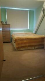 Double room in a 2 bedroom flat share