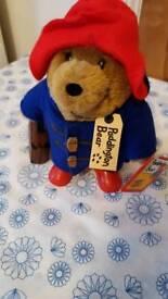 Cute Little Paddington Bear