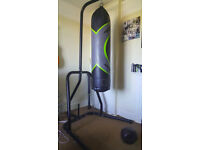 PUNCH BAG WITH STANG LIKE NEW !