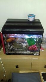30L Tropical Fish tank full set up and accessories