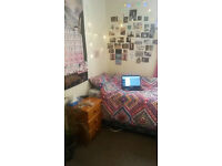 Room in Stranmillis for the summer, 5mn from Queen's, calm neighbourhood