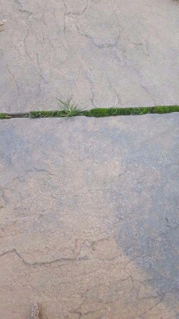 64 x brown blend paving slabs 450 mm x 450 mm