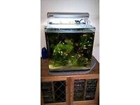 Aqua One Fish tank AquaNano 40 Tropical Aquarium 55 Litre