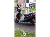 beeline tapo 50 Moped