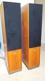 Audiophile soundsystem - Dynaudio Speakers & Talk Electronics Amplifiers