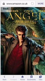Angel after the fall vol 1