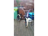 STOLEN SINNER BMX FOR SALE