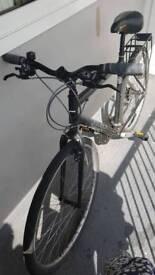 Ridgeback speed bike