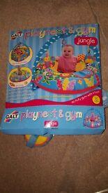 Galt playnest and gym