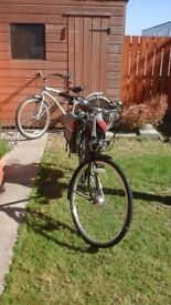 Mens Pashley Cycle. Very Good Condition. With unused Large Cycle Helmet.