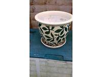 Attractive Indoor Plant Pot for sale