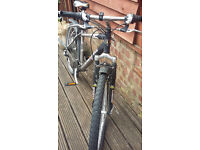 I'm selling my two beloved bikes - one mountain bike (26''), recently redone and my vintage peugeot