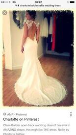 Brand new Charlotte balbier nellie wedding dress