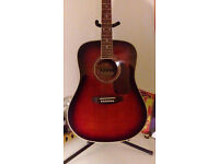 Levin Acoustic Guitar with hard case
